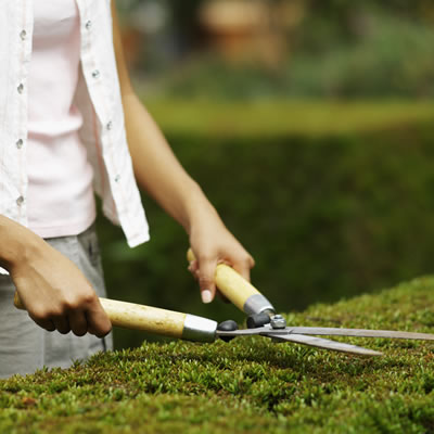 400x400-gardening-12