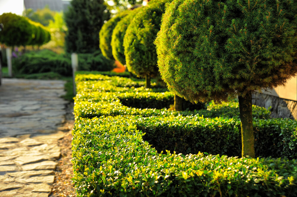 garden landscaping design formal